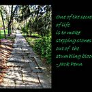 The Path of Life... by Jane Neill-Hancock