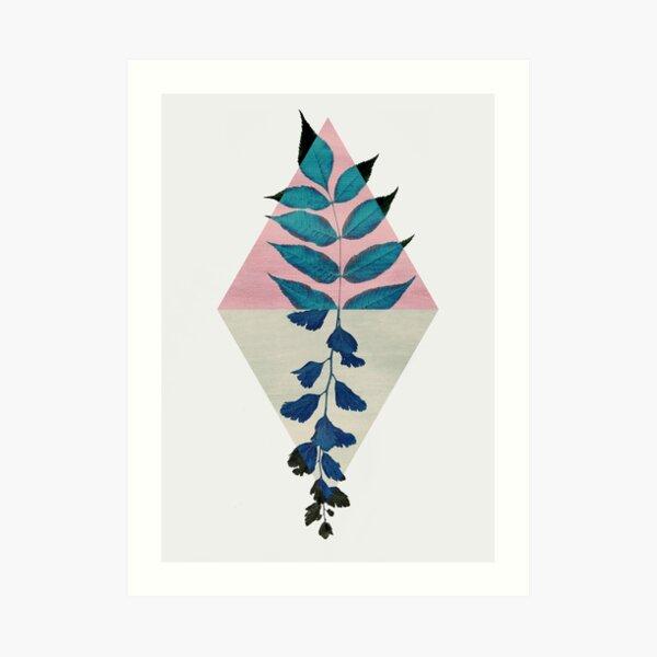 Geometry and Nature I Kunstdruck