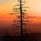 Sunrise Over the Smoky's IV by Douglas  Stucky