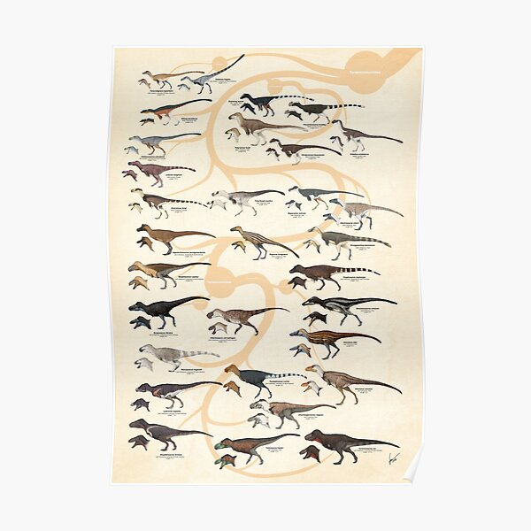 Tyrannosauroid Dinosaurs Póster