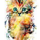 Kitten by RIZA PEKER
