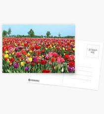 Color me a rainbow Postcards