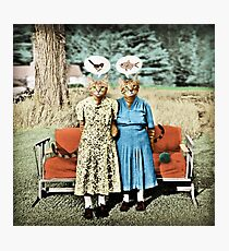 Two Cool Kitties: What's for Lunch? Photographic Print