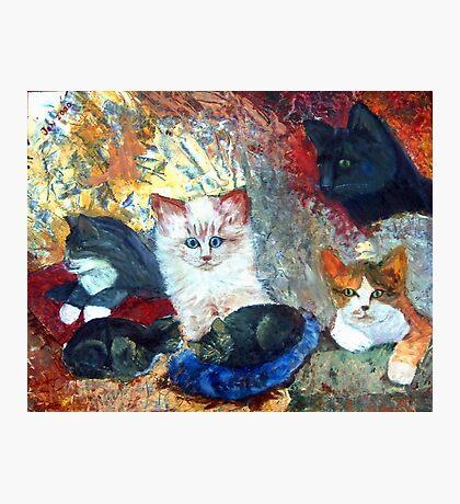 Cats Love Photographic Print