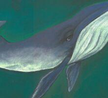 Living Waters Series: Sampson Sticker