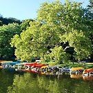 Kayaks by patti4glory