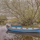 Blue Boats at Lough Leane by Pauline Tims