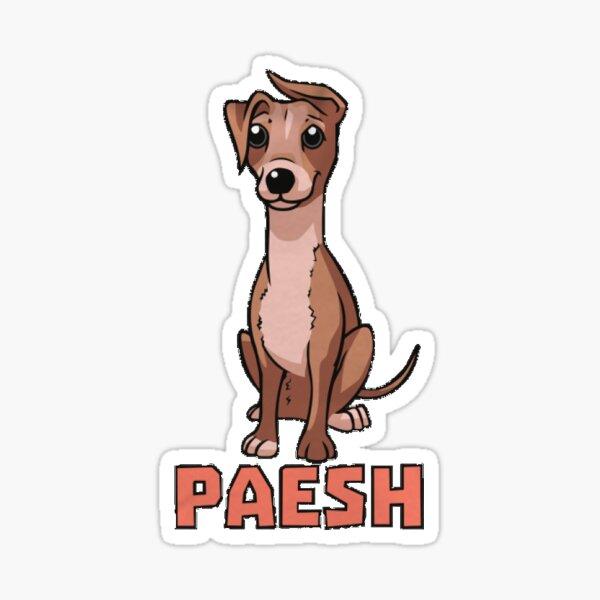 Paesh  Sticker