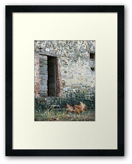Italian Countryside by Studio8107