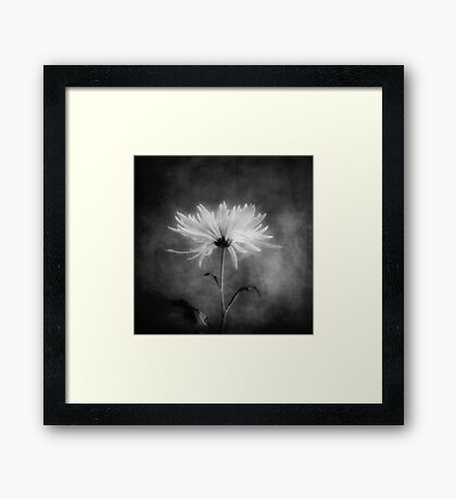 Autumn Mum in Black and White Framed Print