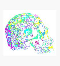 A Skull - The Many Parts of Us Photographic Print