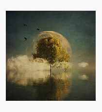 Surrealistic landscape with yellow birch and full moon Photographic Print