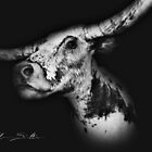 Old Paint The Bovine Lap Cow in Black & White by ChasSinklier