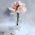 Rhododendron Bloom in a Glass Bottle by LouiseK