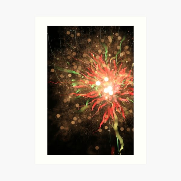 fireworks 10/9/16 Art Print