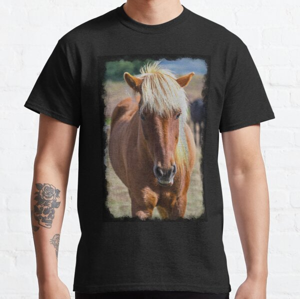 Horse with no name Classic T-Shirt