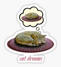 Cat Dreams Sticker