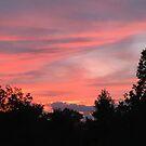 Summer Sunset by Ann Allerup