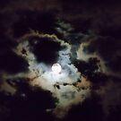 Full Moon in Aquarius by Ann Allerup