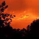 Tormented Skies by Ann Allerup