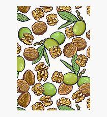 cheeky walnuts pattern Photographic Print