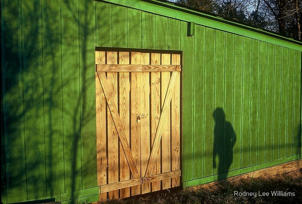 Shadow Man by Rodney Lee Williams