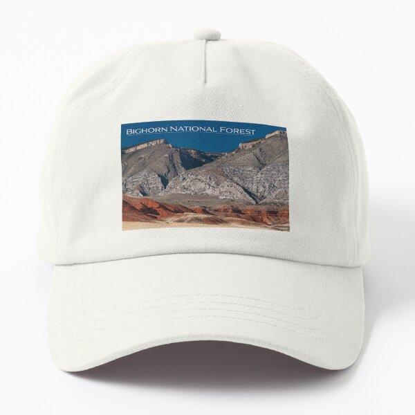 Bighorn National Forest Dad Hat