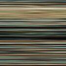 « Into the Wild Colorblinds » par Benoit Cote, C.S.I.
