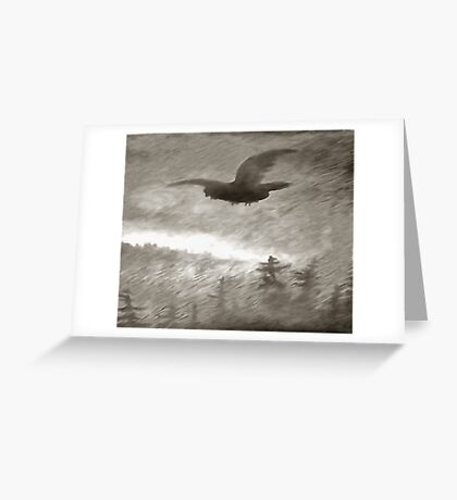 Stealth And Surprise Of The Night Owl Greeting Card