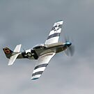 North American P-51D Mustang  by larry flewers