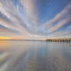 Streaks Ahead - Wellington Pt Qld Australia by Beth  Wode