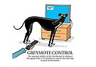 Greyhound Glossary: Greymote Control by RichSkipworth