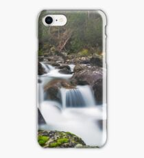 Branches in the Mist iPhone Case/Skin