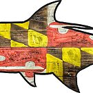 Maryland Flag Tarpon by Statepallets