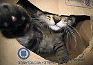 Paper Bag POW! by Jaeda DeWalt