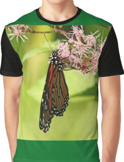 Folded Monarch Graphic T-Shirt