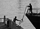 Docking by awefaul