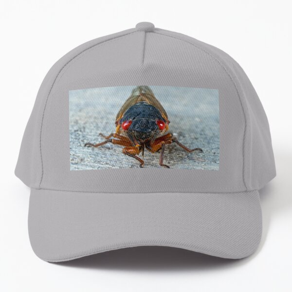 17-Year Periodical Cicada Face Baseball Cap
