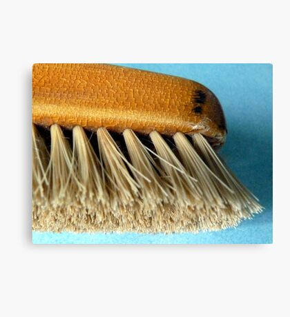 Old clothes brush Canvas Print