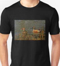 Northern Shoveler Pair Unisex T-Shirt