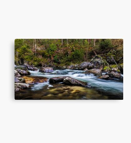 Smoothing Agent Canvas Print