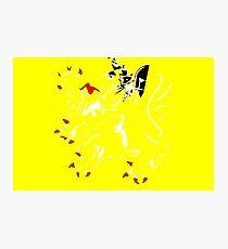 Flanders Flag Photographic Print