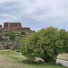 Hammershus Bornholm by Aase