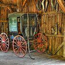 Wagon lost in storage by Tony  Bazidlo