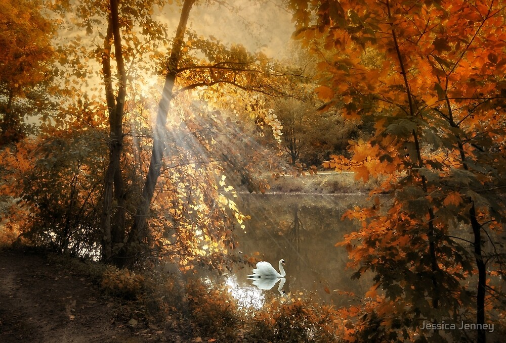 Autumn Afterglow by Jessica Jenney