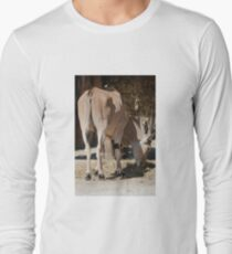 deer in the mountains Long Sleeve T-Shirt