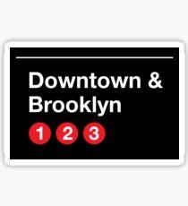 Downtown & Brooklyn Sticker