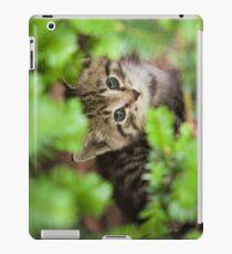 Lonely Kitten iPad Case/Skin
