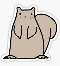 Gray Squirrel Sticker