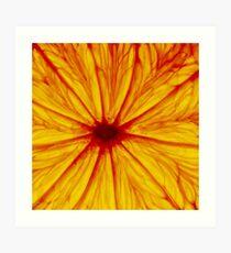 0820 Citrino Star Art Print